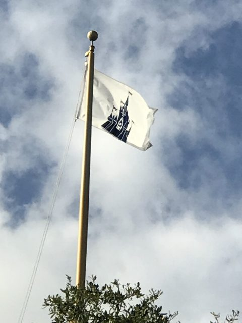 Walt Disney World Flag