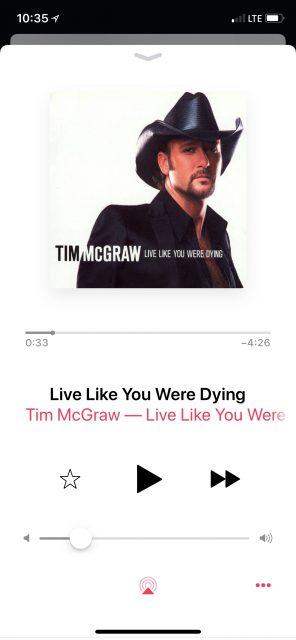 Tim McGraw song