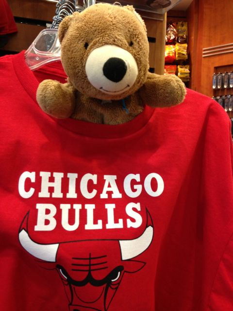 Teddy bear in Chicago airport gift shop