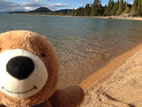 Lake Tahoe shore with Teddy Bear