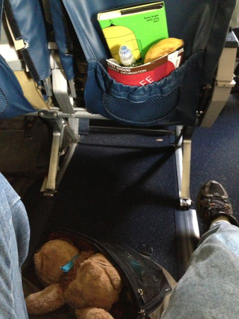 business traveler set up for success in first class Delta seat