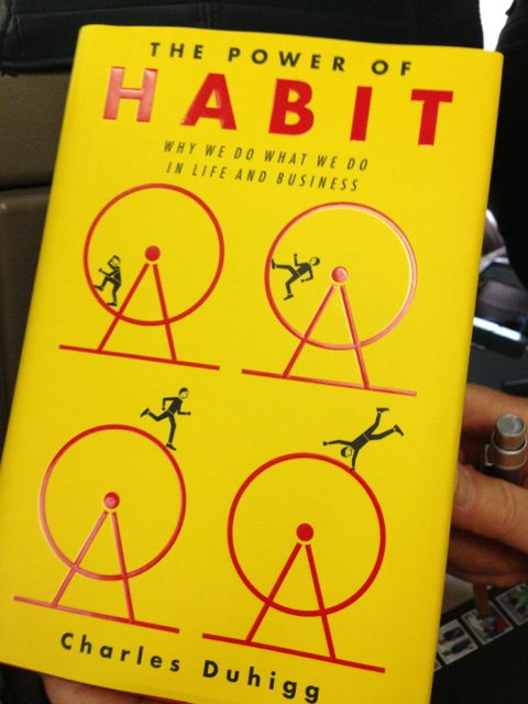 The Habit, a book of habits