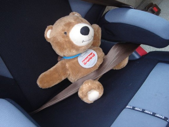 Teddy Bear using seat belt in child car seat