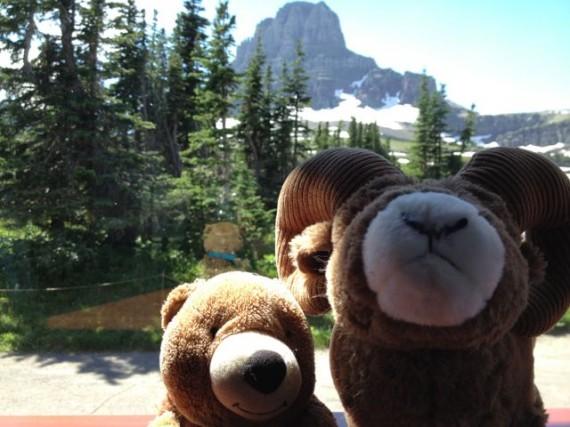 Two stuffed toy animals at Logan Pass