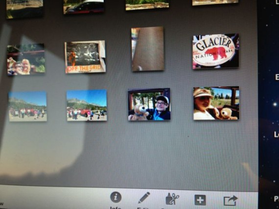 screen shot of iPhoto pictures