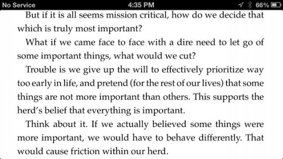 Mid Life Celebration book excerpt with typo