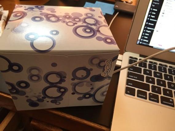 Hidden Mickey on tissue box