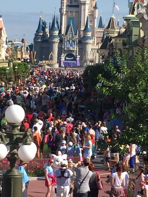 Disney's Magic Kingdom photo on a busy day
