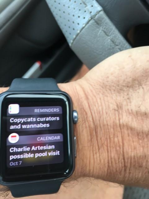 Apple Watch reminder app