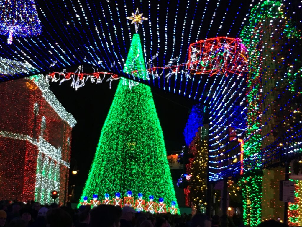 Disney Theme Park Christmas tree at night